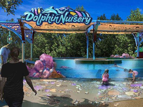 SeaWorld Orlando brings new #Dolphin Nursery Experience in 2017