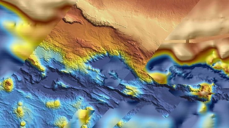 It seems something positive might come out of the long and tragic search for missing flight MH370. Those searching for the downed plane have released all of the scans they made of the ocean floor. And while they haven't revealed the resting place of MH370, they have led researchers to some other amazing discoveries.