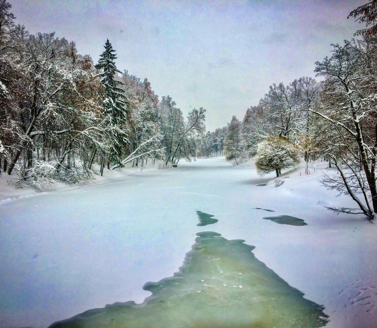 #Winter #fairytale❄️🌬⛄️#dark #blue #sky #sunset  #white #snow #frost #pond 🛷⛷☃️#beautiful #tree #nature ##landscape 🌲🌲🌲🦆🦆