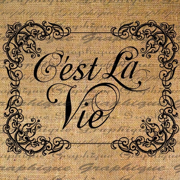 Cest La Vie French  Thats Life Text Typography Word Digital Image Download Sheet Transfer To Pillows Totes Tea Towels Burlap No. 2012. $1.00, via Etsy.