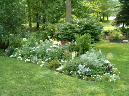 Moon Garden Forum - GardenWeb