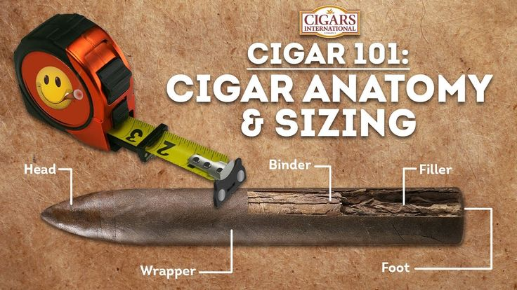 Cigar 101: Cigar Anatomy and Sizing - Cigars International