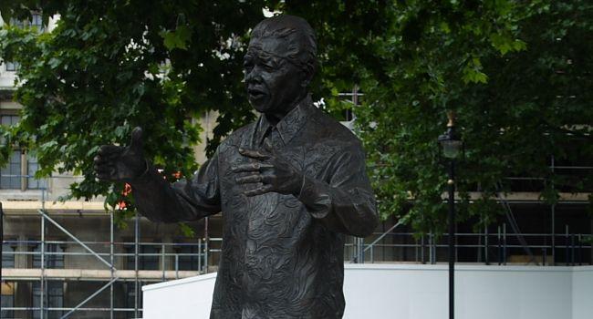 9 moving Vines in honour of Nelson Mandela