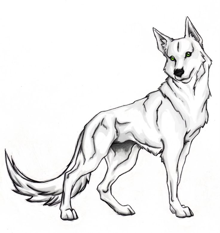 wolf coloring pages for kids Cute Wolf Coloring Page