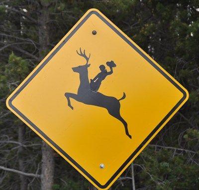 Image result for cowboy deer crossing
