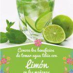 Para Que Sirve Tomar Agua Tibia Con Limon Por Las Mañanas