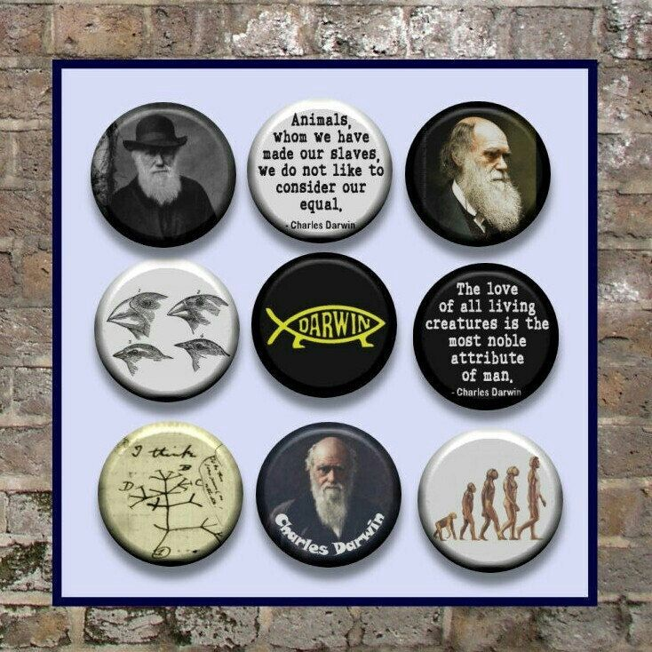 Charles Darwin Theory of Biological Evolution English Naturalist Pinback button set by Yesware11 on Etsy.. click for details!