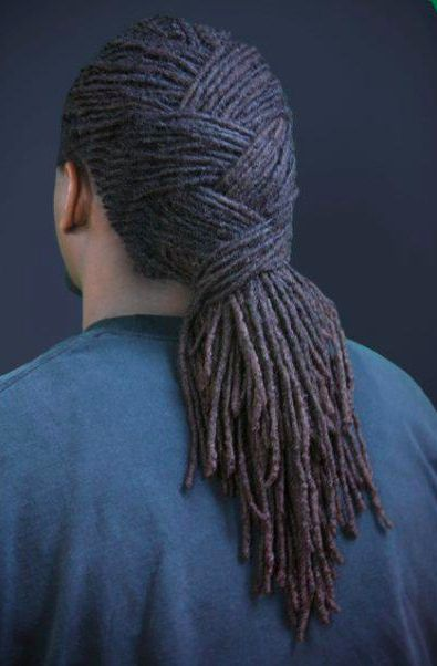 braided dreadlocks styles men wwwimgkidcom the image