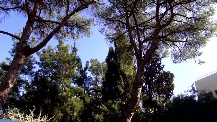 20 χρόνια Τμήμα Γεωγραφίας Πανεπιστημίου Αιγαίου Μυτιλήνη  University of the Aegean - Department of Geography 20 years - Mytilene - Lesvos Island  Δείτε λίγα λόγια για το τμήμα και την επιστήμη της Γεωγραφίας  #Greece #Geography #lesvos #Aegean #Γεωγραφία #20yearsGeography Dept of Geography, University of Aegean