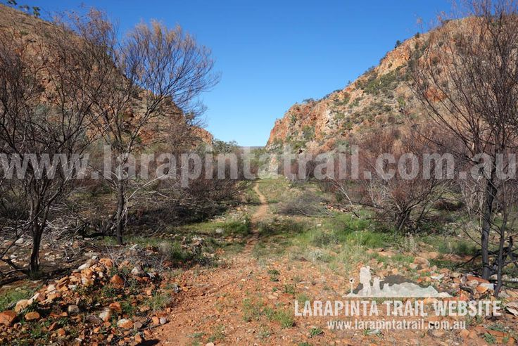 Heading into Rocky Bar Gap from the northern side. Image looking south. © Explorers Australia Pty Ltd 2014