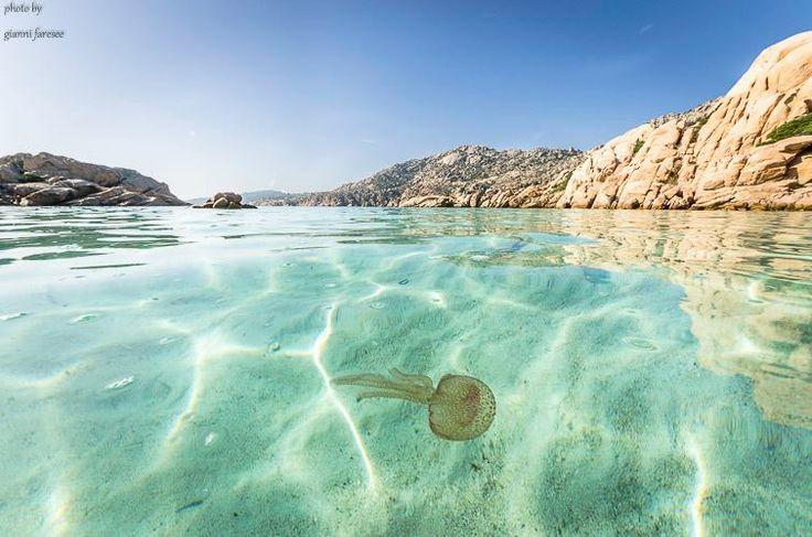 Www.lineadelleisole.com La Maddalena Archipelago