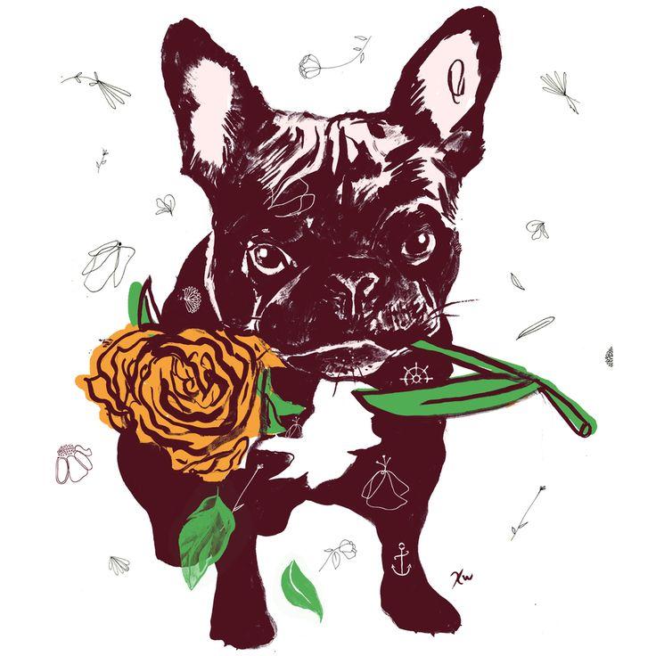 Kate Worum Illustration — Bully