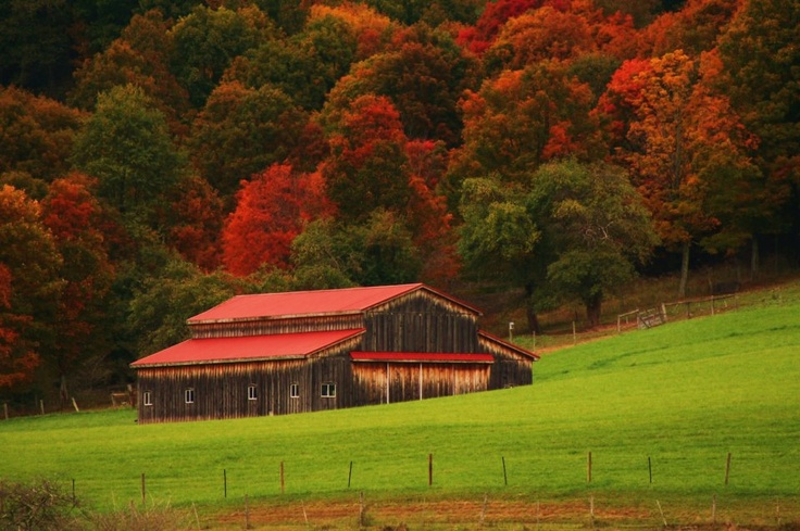 1000 images about west virginia old farms on pinterest for West fall