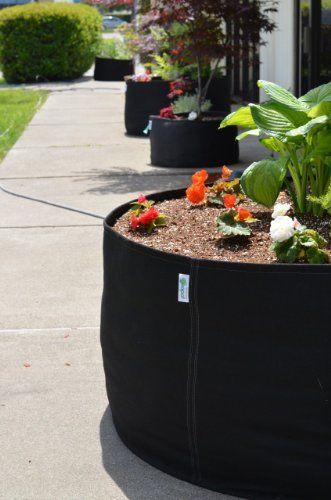 GeoPot 400 Gallon by GeoPot. $76.25. Enjoy the benefits of air root pruning creating a better root structure and aeration to the root zone through the porous fabric.
