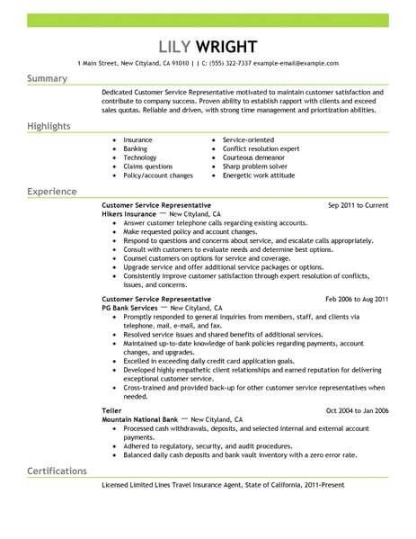 Cool Customer Services Cv Template Pictures Customer Service