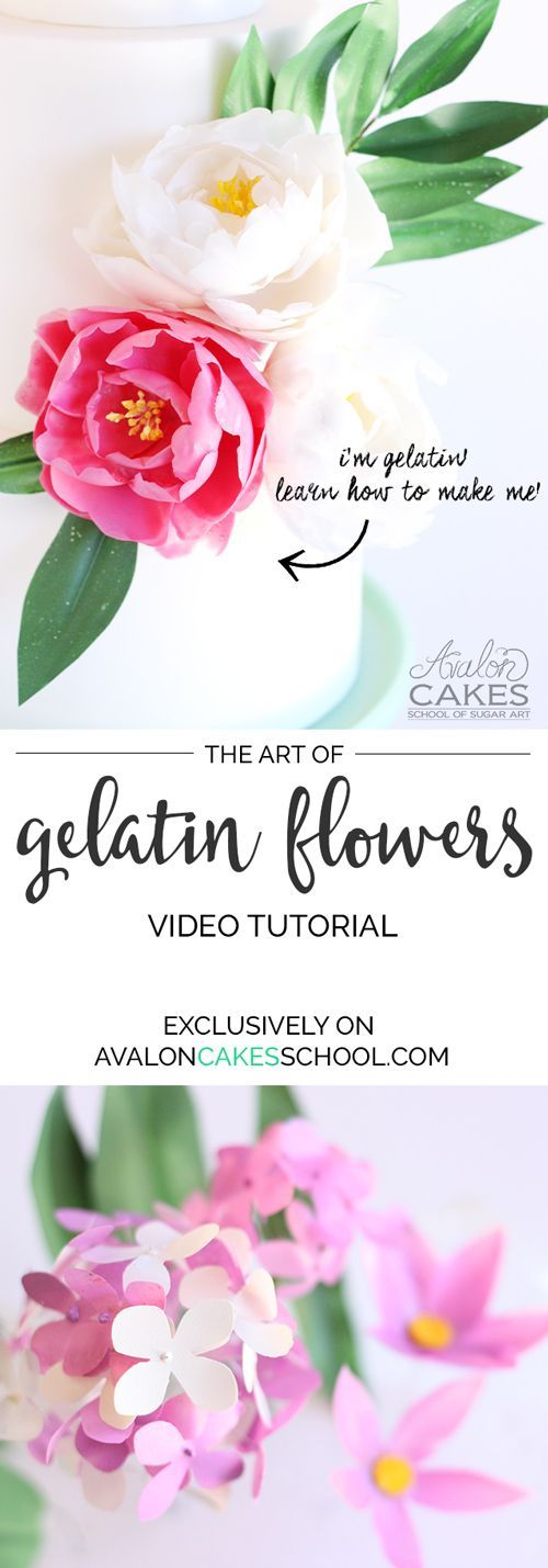 Learn how to make Gelatin Flowers for your cakes! She covered everything you need to know about the technique and shows you how to make peonies, blossoms and leaves. Can't wait to make them!!