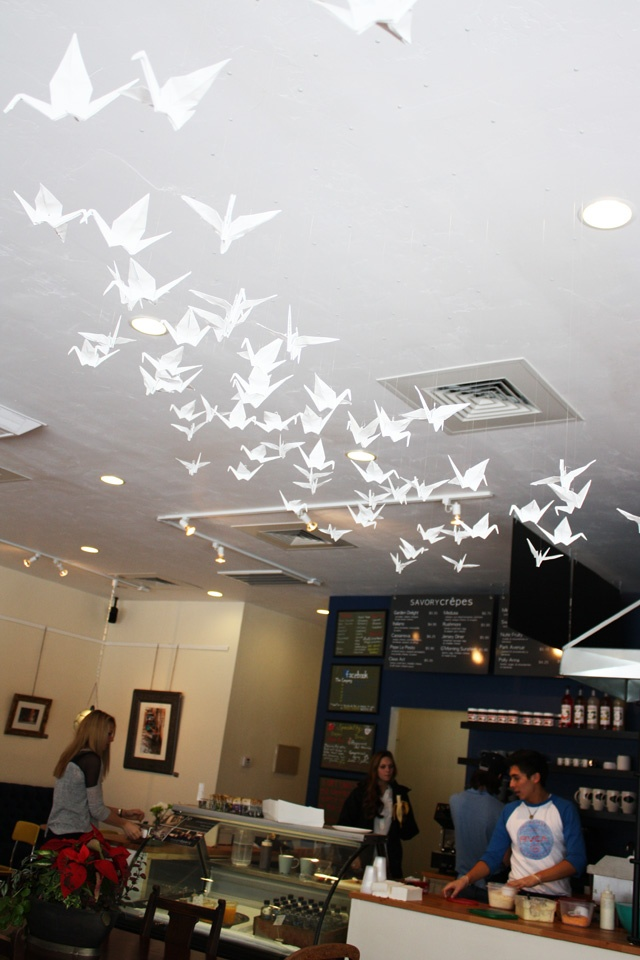 Cute coffee shop in Logan, love the birds on the ceiling!