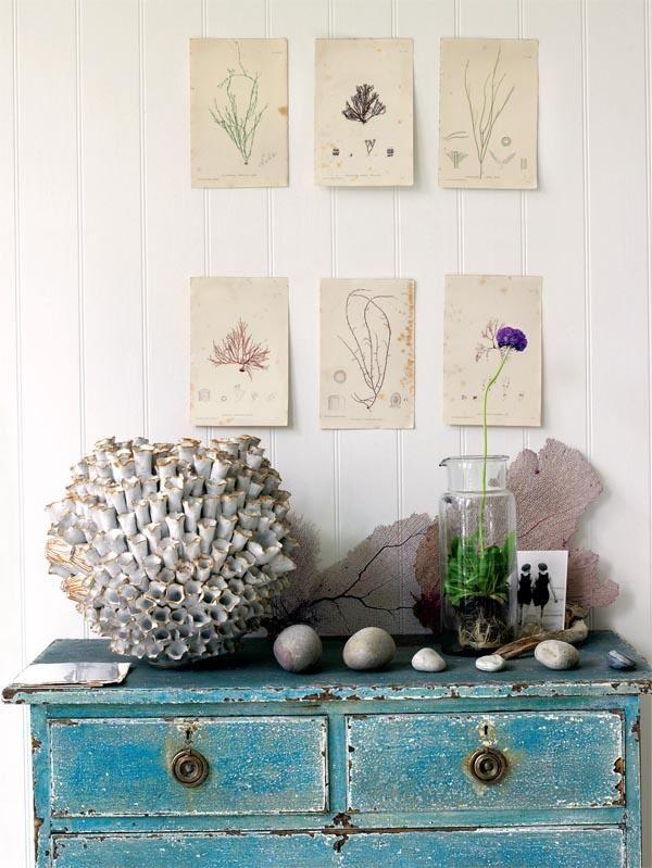 Beach house- love the found objects as decor (shells beach rocks etc)