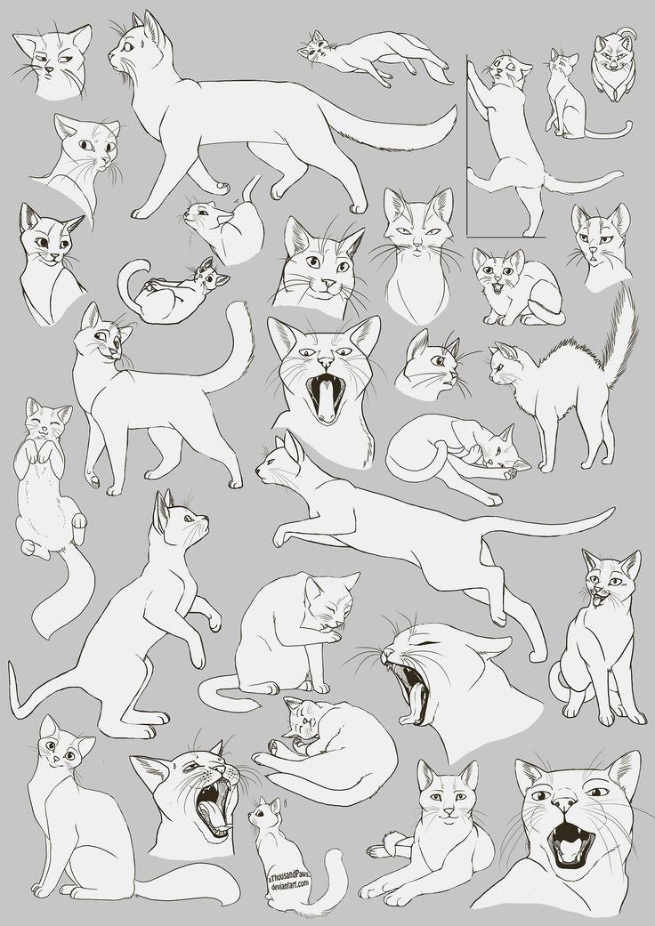 kitty cat drawing art cats draw kitten house kitteh feline paws kittens felines Anatomy reference tutorial