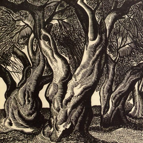 Olive tree trunks, A. Tassos, 1938, woodcut