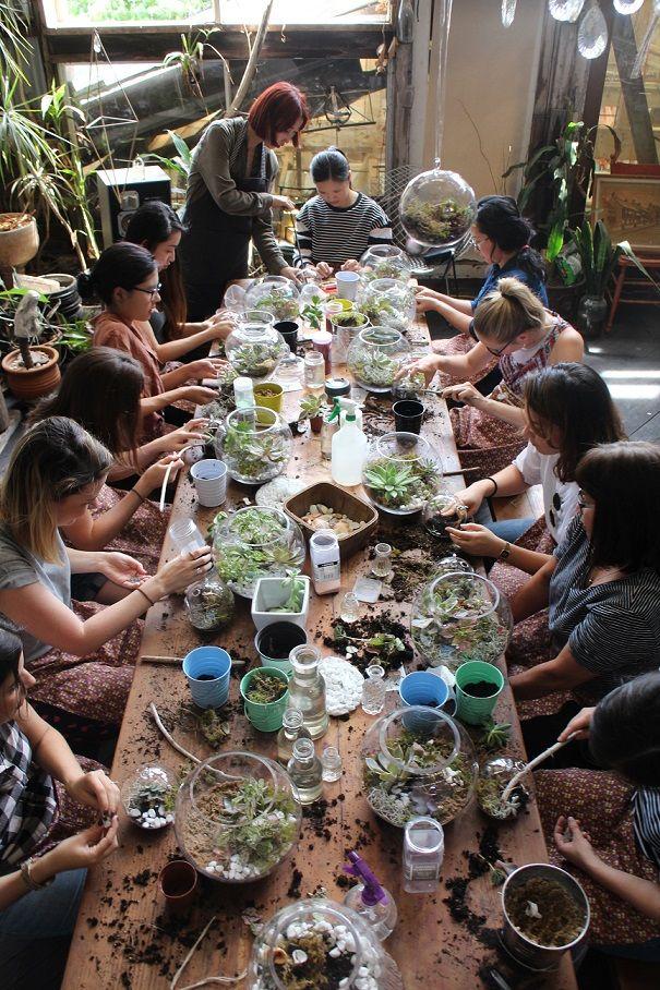 terrarium making workshop sydney