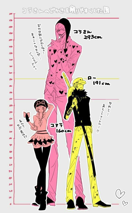 One piece heights - Trafalgar D. Water Law, Koala, and Donquixote Rocinante, (Corazon), (Corasan, Cora-san) One piece