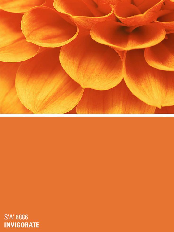 Sherwin-Williams orange paint color – Invigorate (SW 6886)