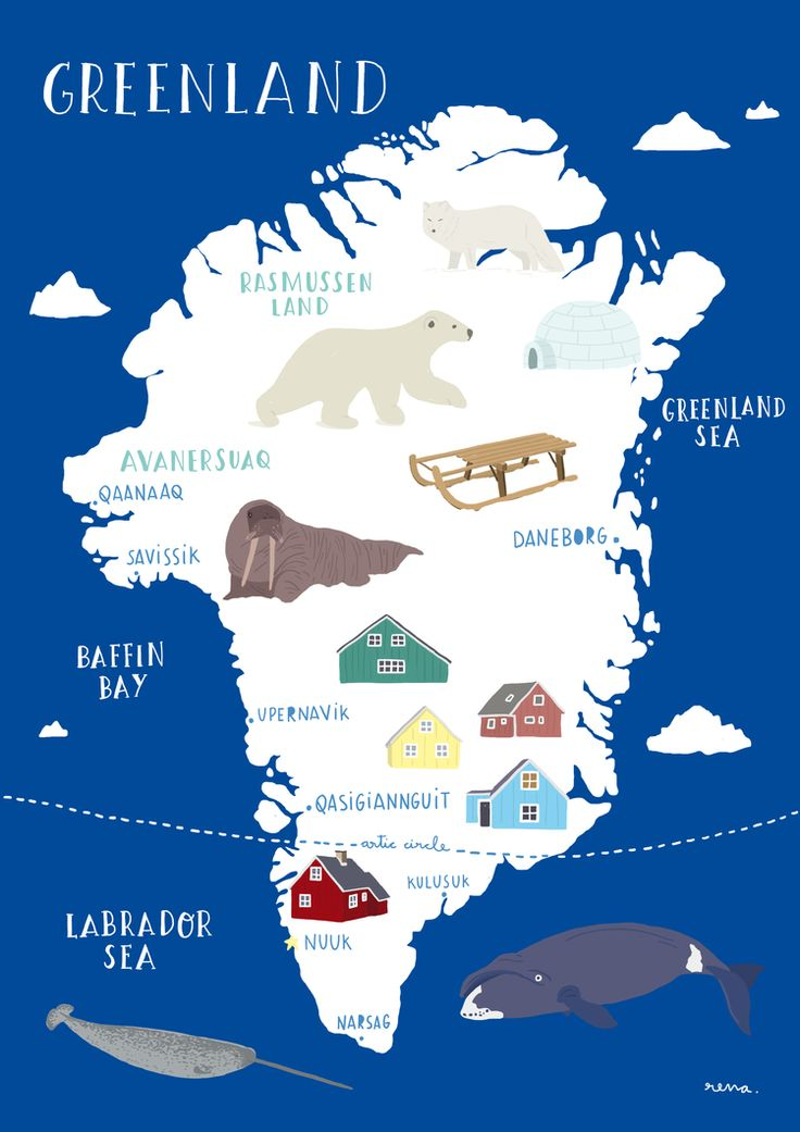 A Map of Greeland, place of polar bears, inuits, narwals, arctic foxes and ice - Rena Ortega