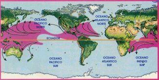 Los ciclones tropicales que se forman en el Atlántico Norte y Caribe, siguen el borde del Anticiclón Subtropical de las Azores. Algunos cruzan las Antillas y llegan al mar Caribe, otros penetran en EEUU donde mueren y otros cruzan la Península de Florida, llegan al Golfo de México y desde allí a Nueva Orleans. Existió un caso en el que un huracán rozó la costa norte de Sudamérica, cruzó Panamá, llegó al Océano Pacífico y se internó en México (Joanna).