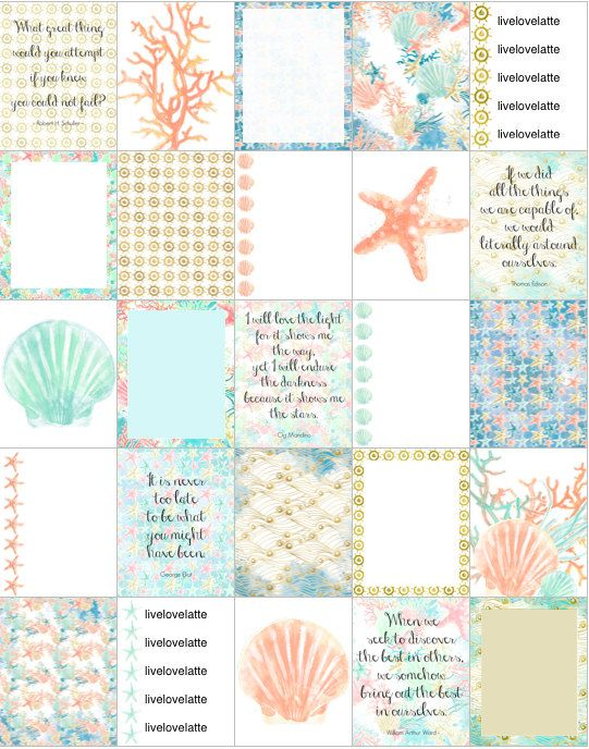 SEA SHELLS CORAL Starfish (Mint, Coral) Erin Condren (Vertical) Planner Stickers - digital - INSTANT DOWNLOAD by LiveLoveLatte on Etsy