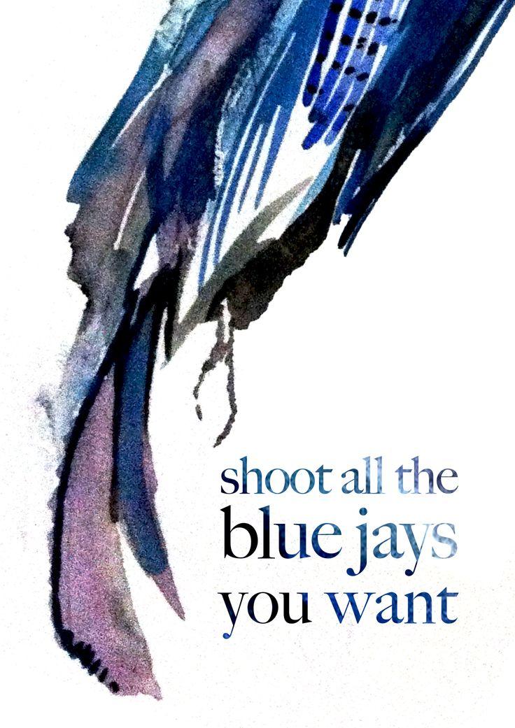 Blue jay draft