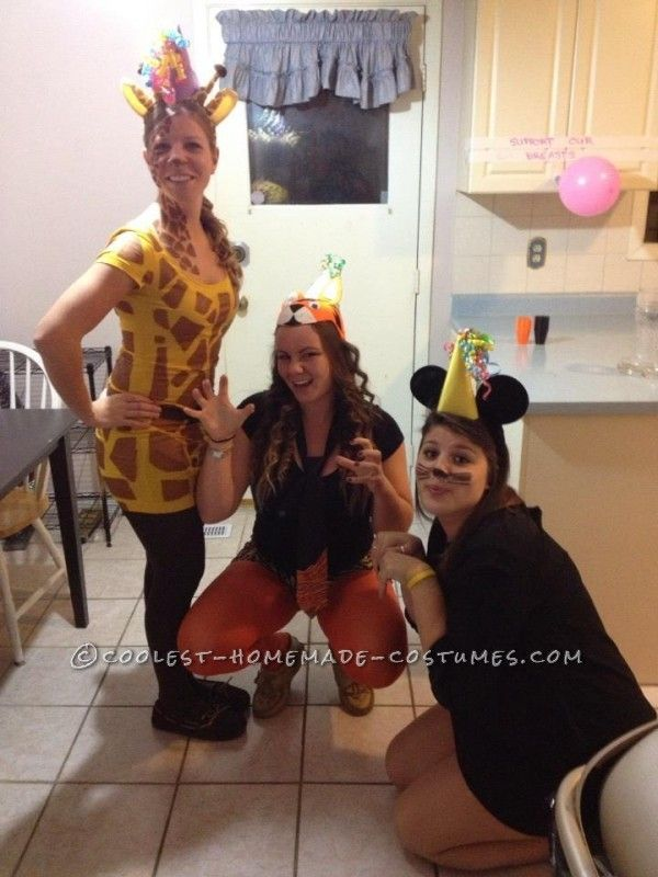 easy animal costume ideas adults