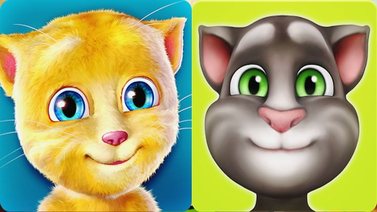 My Talking cat Tom funny reactions VS MY Talking Ginger - new episode 20...