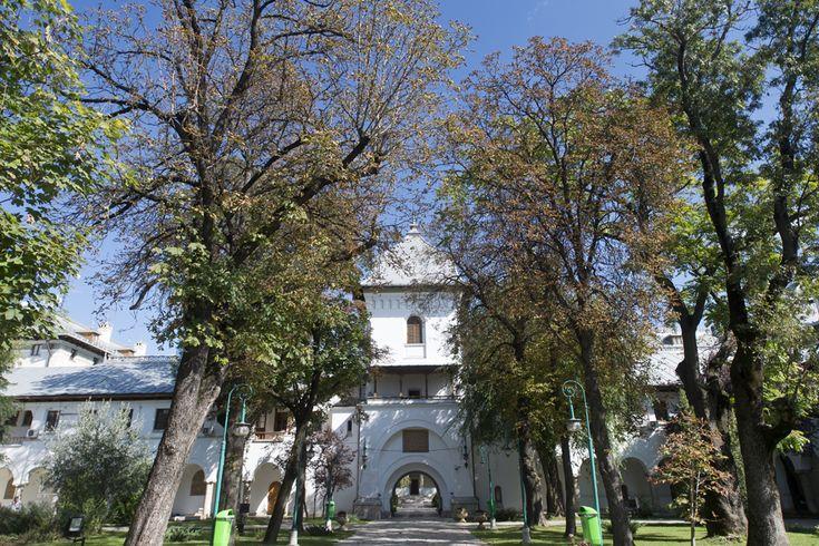 Gradina Palatului Cotroceni (Octav Ganea)