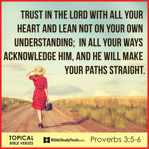 Trusting In The Lord Quotes: 1000+ Images About Daily Verses On Pinterest