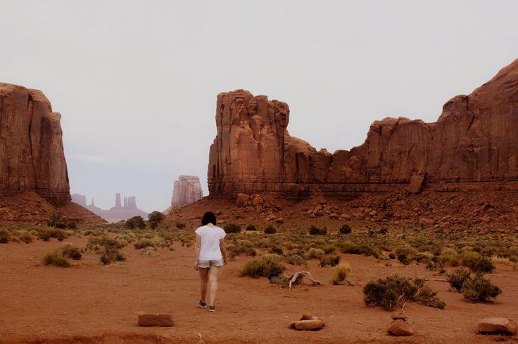 Les parcs nationaux, chapitre II