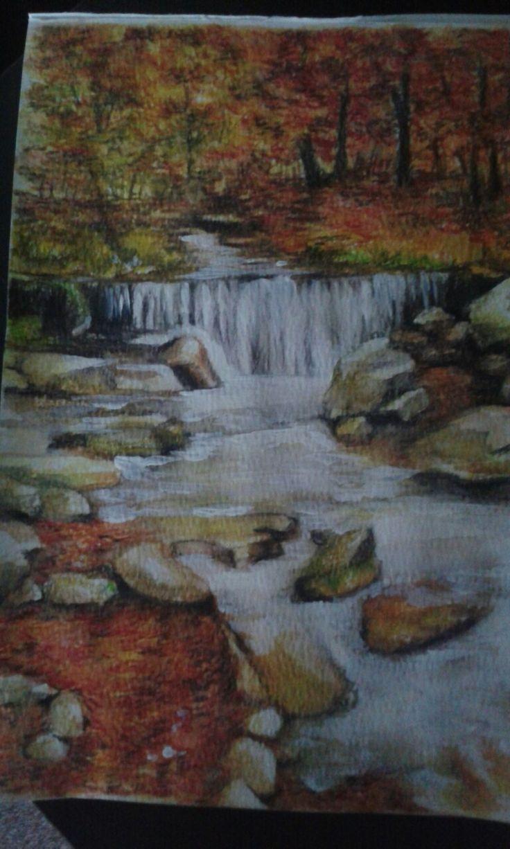 Watercolour pencils- I used derwent.