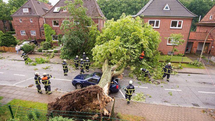 Sturm, Überschwemmung, Blitzschlag: Wer zahlt die Unwetter-Schäden?