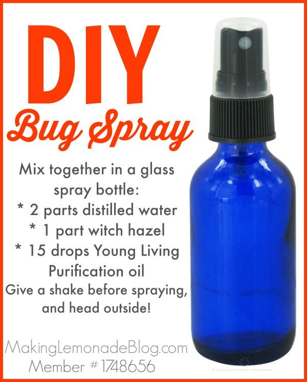 homemade outdoor cing spray bugs hate it bug