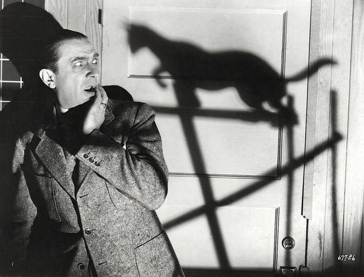 Image result for the black cat film