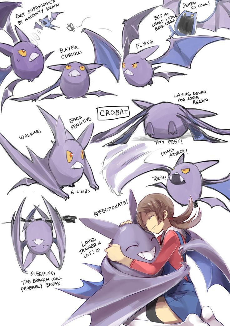 Various faces of Crobat (Pokemon) Dawwwwww :3>>>> OMFG I LOVE CROBAT NO MATTER WHICH VERSION I PLAY I ALWAYS HAVE A CROBAT WITH ME