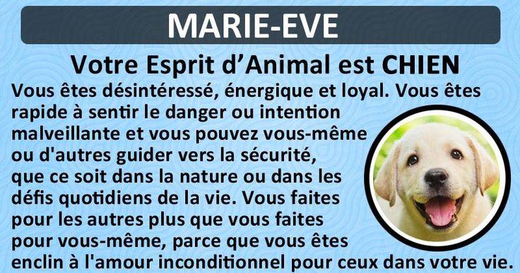 Quel est votre Animal d'Esprit?