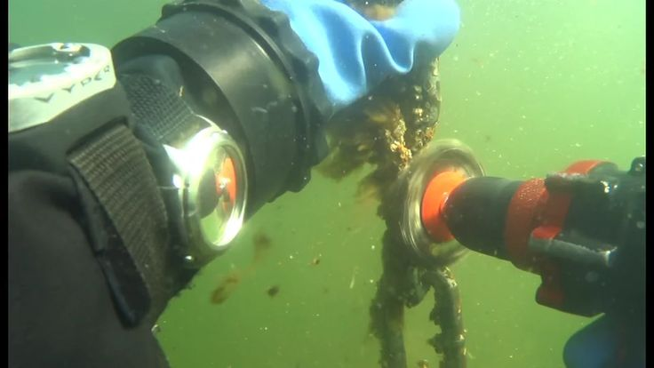Nemo drill with wheel brush attachment cleaning barnacles off a buoy/mooring chain on Vimeo