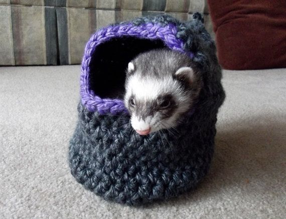 Check out this item in my Etsy shop https://www.etsy.com/listing/227078889/handmade-rodent-guinea-pig-rat-or-ferret