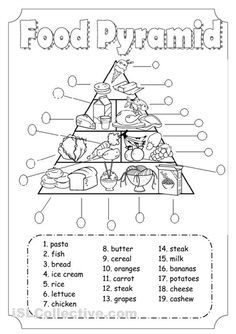 food pyramid for health lesson this will be good to show students how much of - Printable Kids Activity Sheets