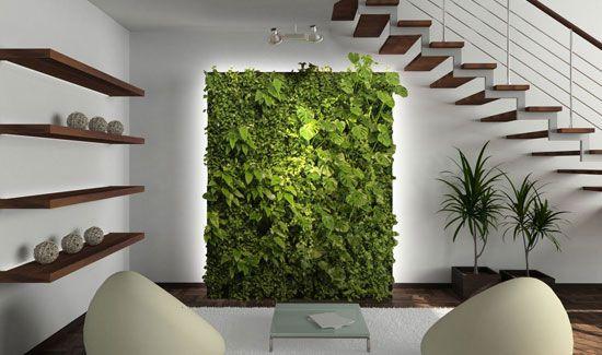 plant wall interiors - http://greenwallaustralia.com.au/services-custom/ $900 - $1200 per square metre