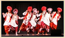 Bhangra dance performance! Must have