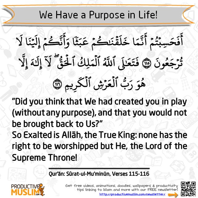 """We have a purpose in life: """"And I (Allāh) created not the jinn and mankind except that they should worship Me (Alone)."""" [Quran 51:56]"""