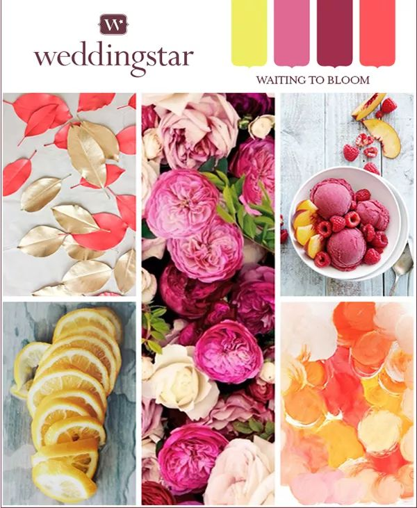 This color board is summer fresh! Bright and vibrant coral, yellow and raspberry come together to make this incredible wedding look!