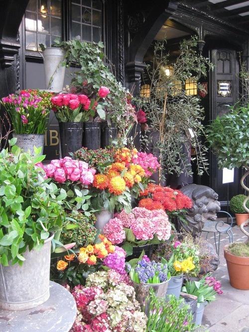Магазин цветов экзотика, цветы